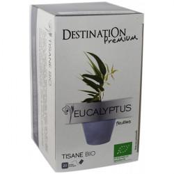 BIO bylinkový čaj eukalyptus
