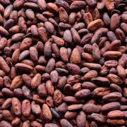 SALDAC kakaové bôby BIO...